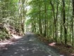 Road from Trefriw to Llyn Crafnant