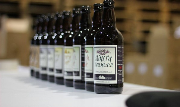Conwy Brewery Beer Bottles