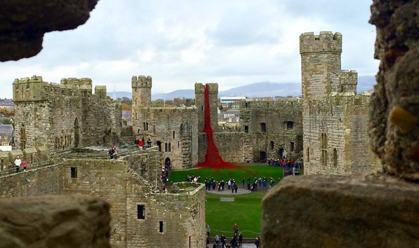 Weeping Tower of Poppies at Caernarfon Castle