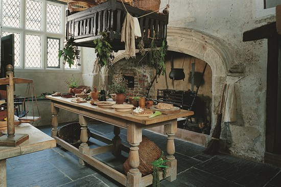 Plas Mawr Kitchen
